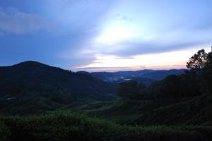 Cameron-Highlands-Half-Day-Sunrise-Expedition-01