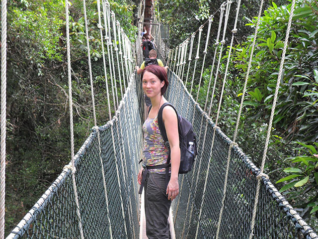 Canopy-Walkway-3 Canopy-Walkway-4  sc 1 st  Greenleaf Holidays u0026 Tours & Attractions of Taman Negara