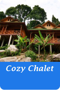 Icon-Button-cozy-chalet