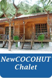 Icon-Button-new-cocohut-chalet