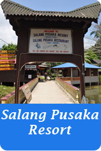 Icon-Button-salang-pusaka-resort