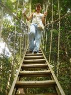 Canopy-Walkway-1