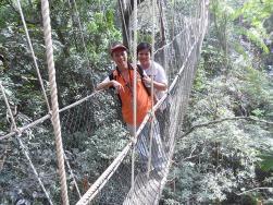 Canopy-Walkway-3