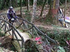 Endau-Rompin-Jungle-Tracking-01
