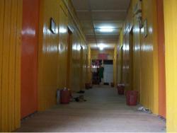 Liana_Corridor