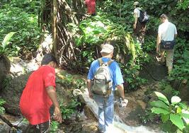 Jungle_Trekking_01