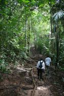 Jungle_Trekking_02