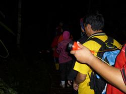 Night_Jungle_Trekking_01