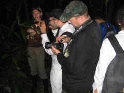 Night_Jungle_Trekking_03